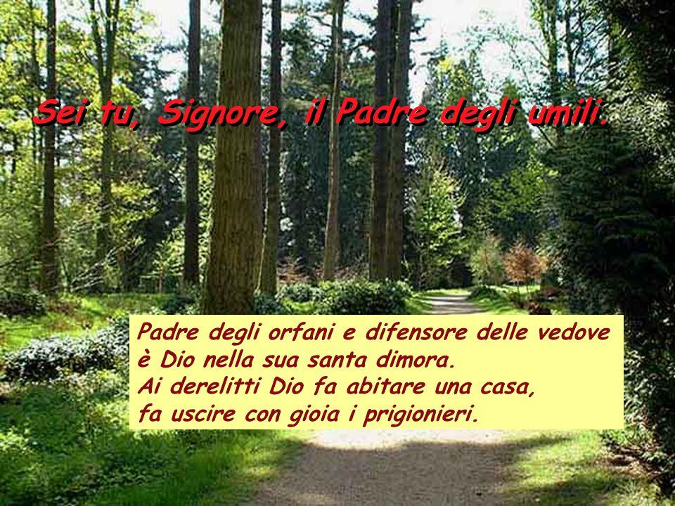 Salmo 67 Sei tu, Signore, il Padre degli umili. I giusti si rallegrino, esultino davanti a Dio e cantino di gioia. Cantate a Dio, inneggiate al suo no