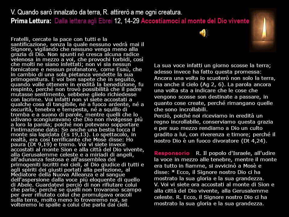 3^ Antifona Fiorente come un olivo chi si abbandona in Dio.