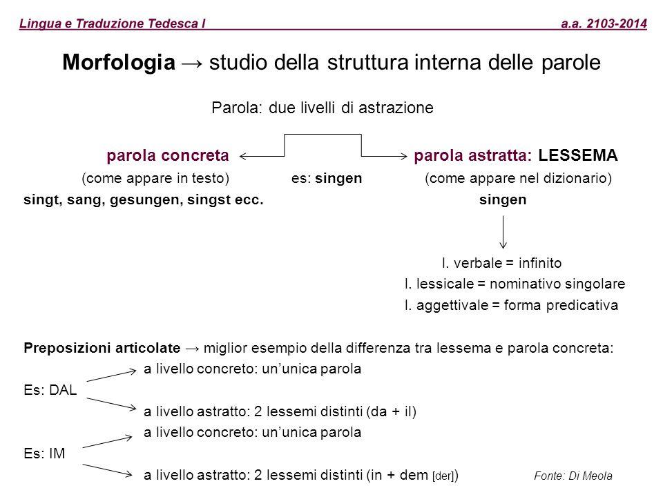 Morfologia → studio della struttura interna delle parole Parola: due livelli di astrazione parola concreta parola astratta: LESSEMA (come appare in te