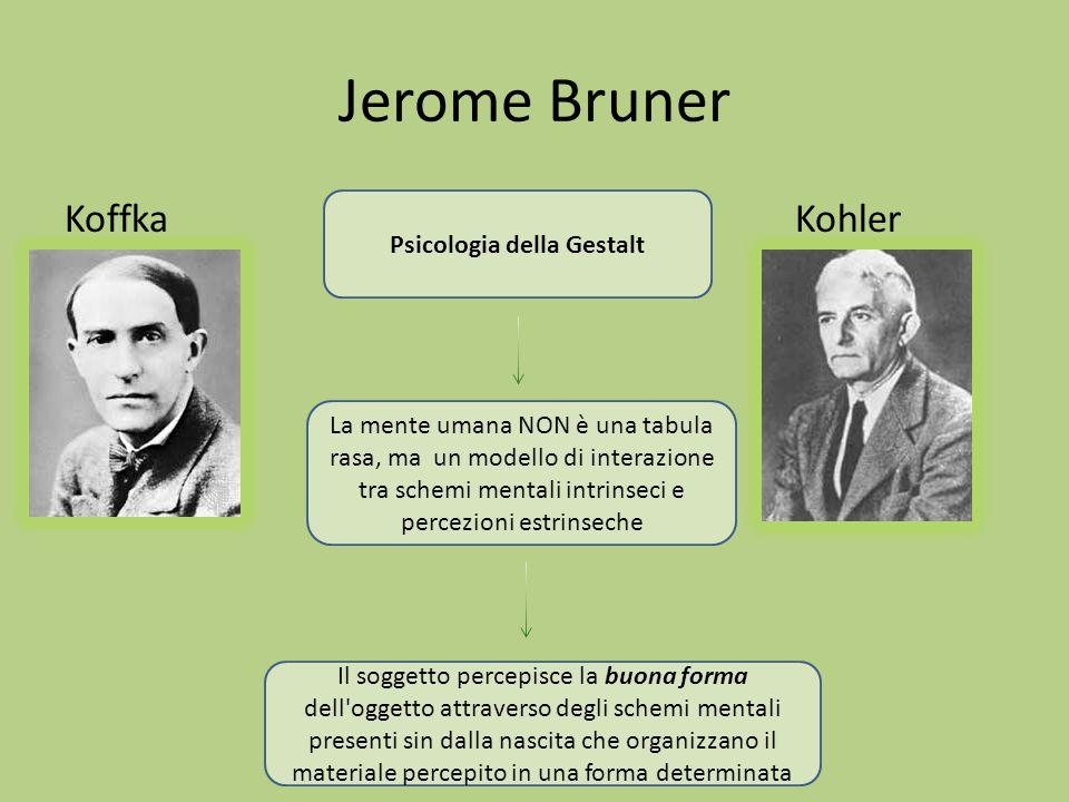 Jerome Bruner Koffka Kohler Psicologia della Gestalt La mente umana NON è una tabula rasa, ma un modello di interazione tra schemi mentali intrinseci