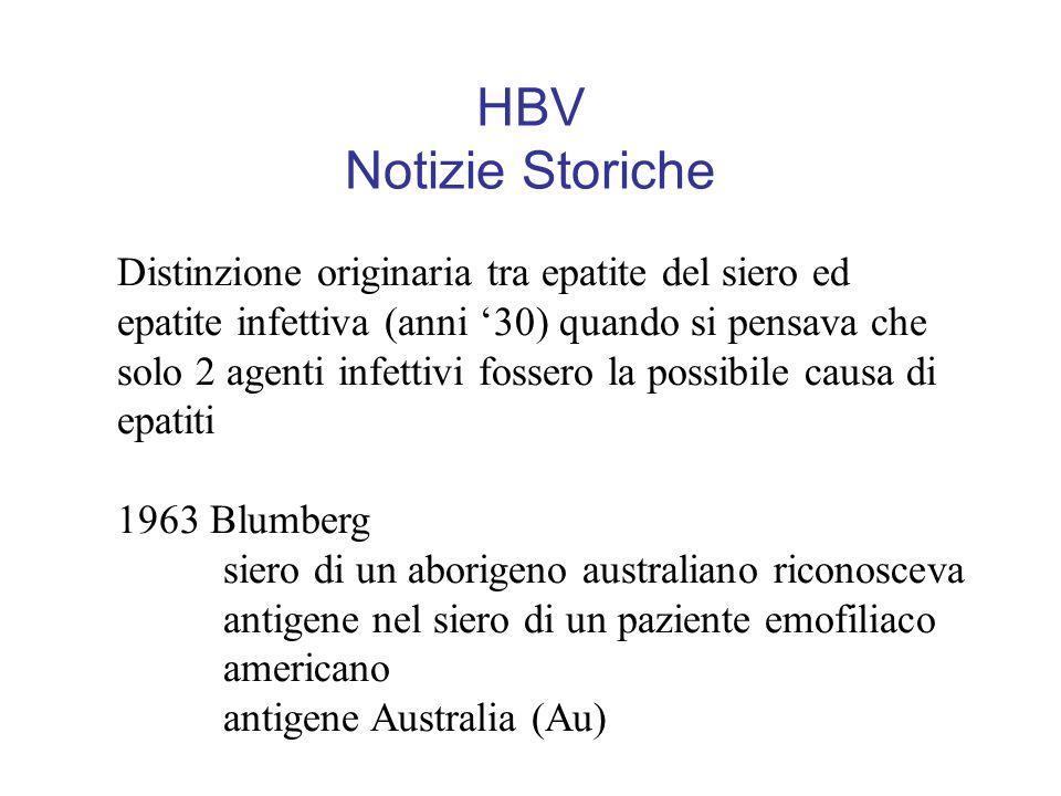HBV Notizie Storiche Distinzione originaria tra epatite del siero ed epatite infettiva (anni '30) quando si pensava che solo 2 agenti infettivi fossero la possibile causa di epatiti 1963 Blumberg siero di un aborigeno australiano riconosceva antigene nel siero di un paziente emofiliaco americano antigene Australia (Au)