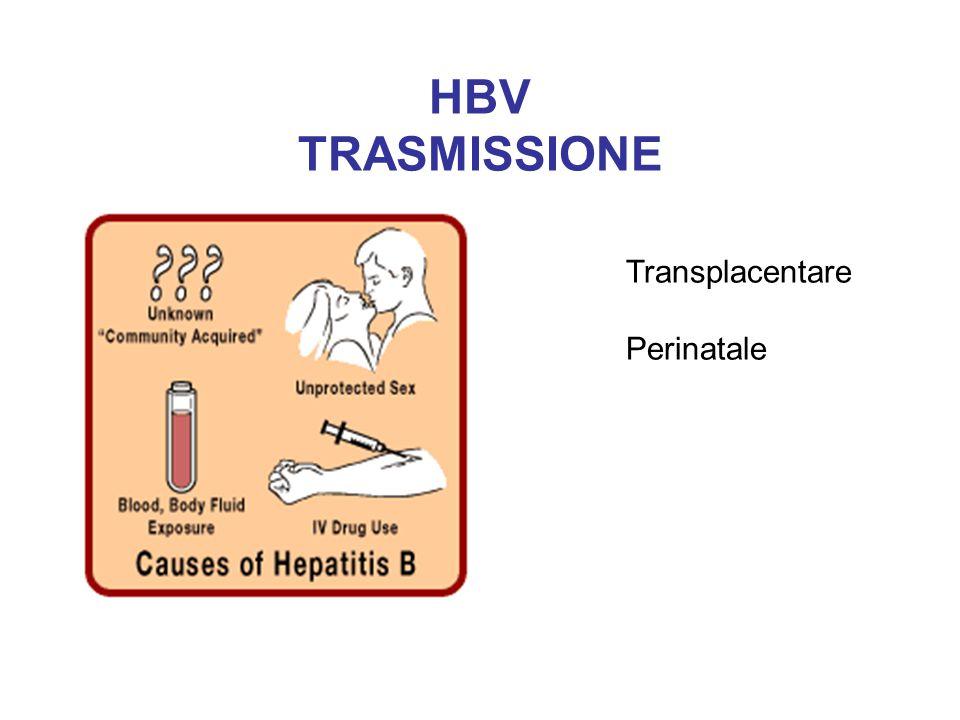 HBV TRASMISSIONE Transplacentare Perinatale
