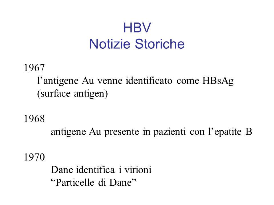 HBV Notizie Storiche 1967 l'antigene Au venne identificato come HBsAg (surface antigen) 1968 antigene Au presente in pazienti con l'epatite B 1970 Dane identifica i virioni Particelle di Dane