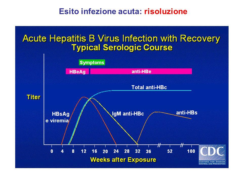 Esito infezione acuta: risoluzione e viremia