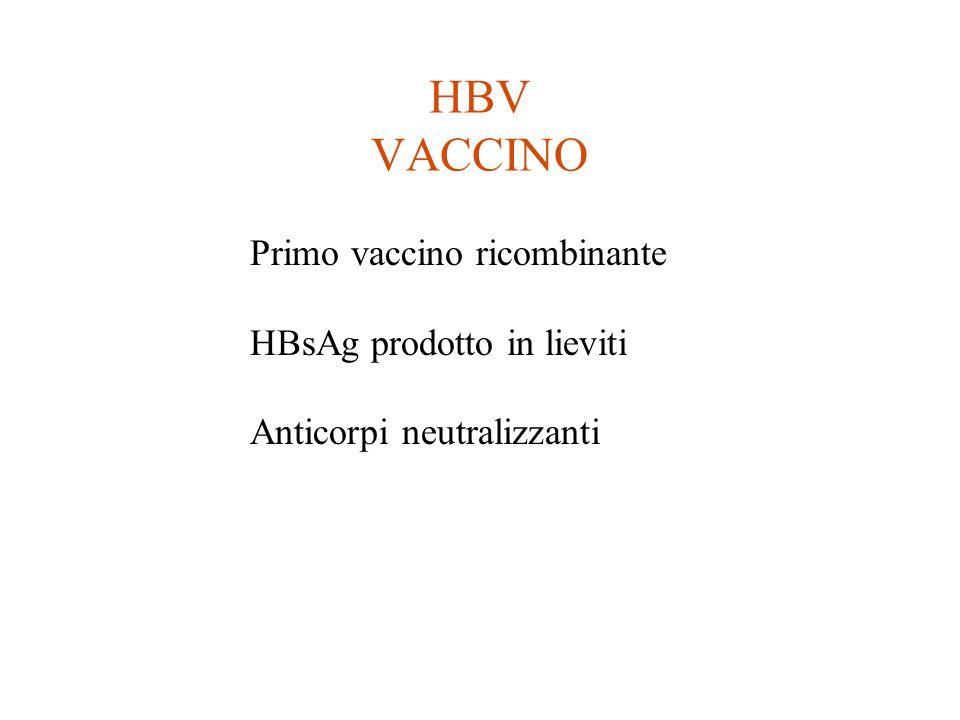 HBV VACCINO Primo vaccino ricombinante HBsAg prodotto in lieviti Anticorpi neutralizzanti
