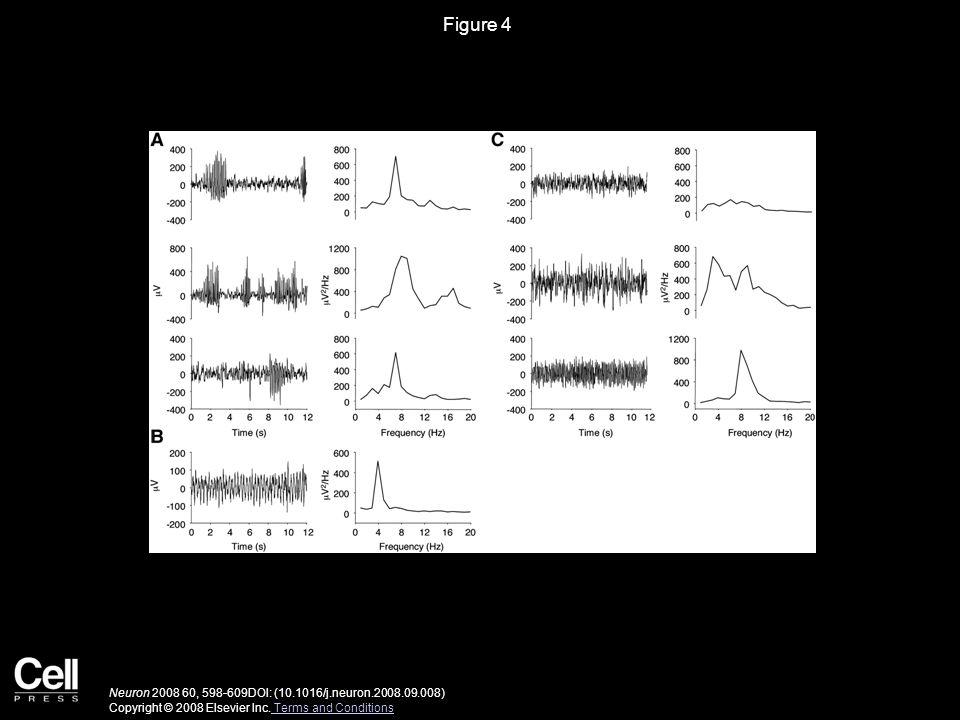 Figure 5 Neuron 2008 60, 598-609DOI: (10.1016/j.neuron.2008.09.008) Copyright © 2008 Elsevier Inc.