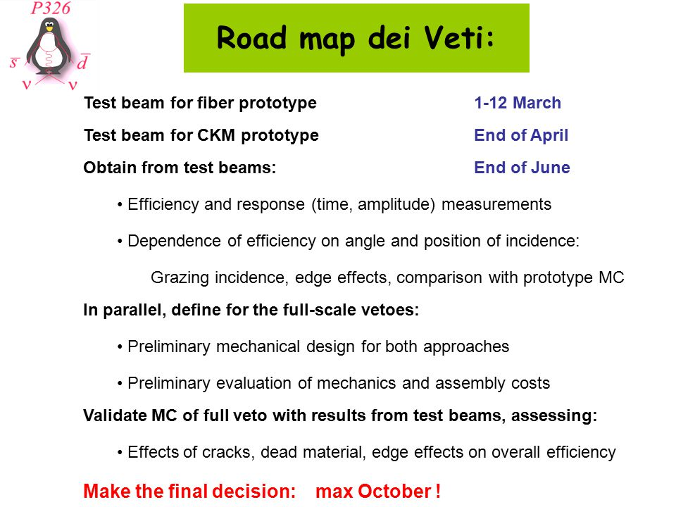 Road map dei Veti: Test beam for fiber prototype1-12 March Test beam for CKM prototypeEnd of April Obtain from test beams:End of June Efficiency and response (time, amplitude) measurements Dependence of efficiency on angle and position of incidence: Grazing incidence, edge effects, comparison with prototype MC In parallel, define for the full-scale vetoes: Preliminary mechanical design for both approaches Preliminary evaluation of mechanics and assembly costs Validate MC of full veto with results from test beams, assessing: Effects of cracks, dead material, edge effects on overall efficiency Make the final decision: max October !