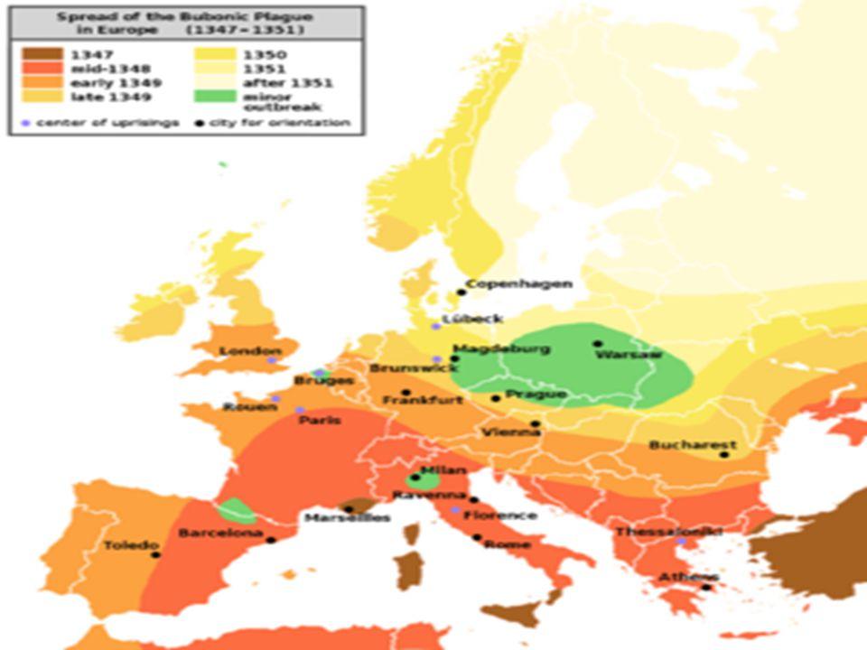 La peste Antonina (166 d.C.) Al termine delle campagne militari orientali contro i Parti, le armate Romane vincitrici portarono nei territori dell impero un epidemia di peste che decimò la popolazione di quel tempo.