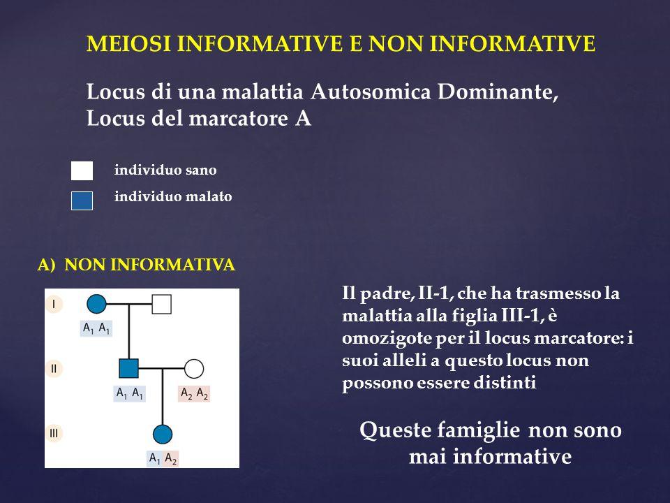 MEIOSI INFORMATIVE E NON INFORMATIVE Locus di una malattia Autosomica Dominante, Locus del marcatore A individuo sano individuo malato A) NON INFORMAT
