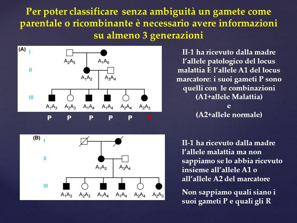 Per poter classificare senza ambiguità un gamete come parentale o ricombinante è necessario avere informazioni su almeno 3 generazioni P P P P P R II-