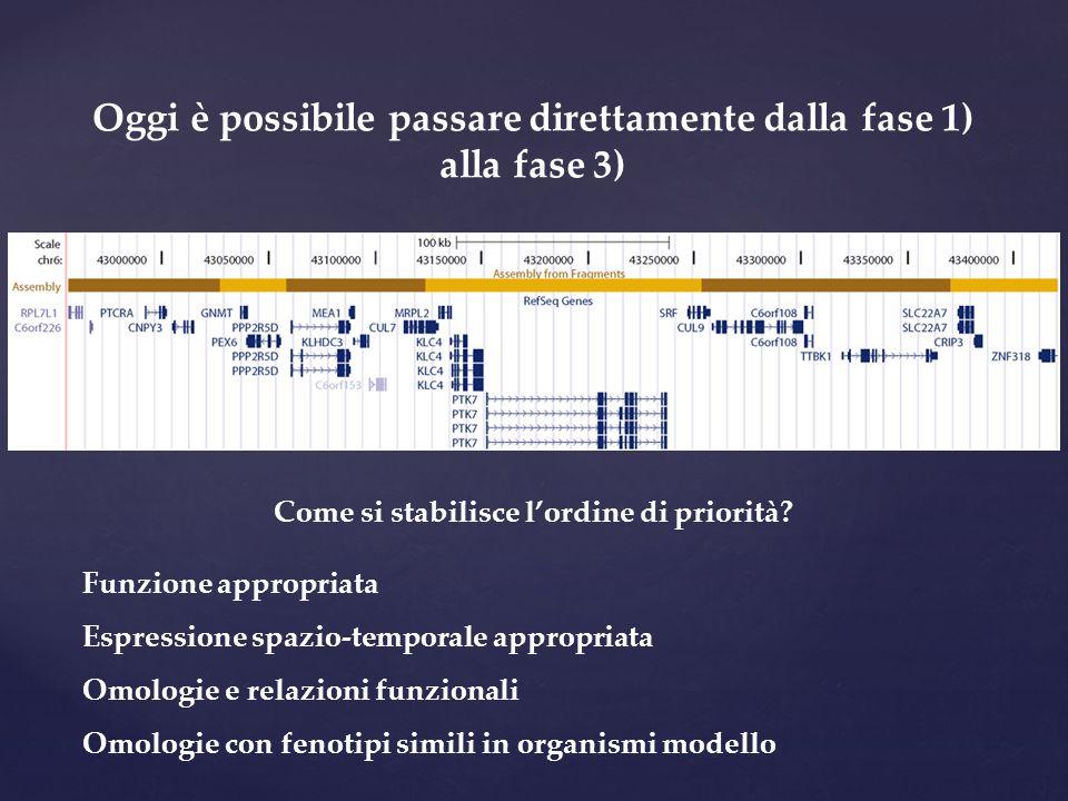 Oggi è possibile passare direttamente dalla fase 1) alla fase 3) Come si stabilisce l'ordine di priorità? Funzione appropriata Espressione spazio-temp