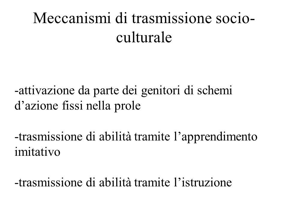 Meccanismi di trasmissione socio- culturale -attivazione da parte dei genitori di schemi d'azione fissi nella prole -trasmissione di abilità tramite l