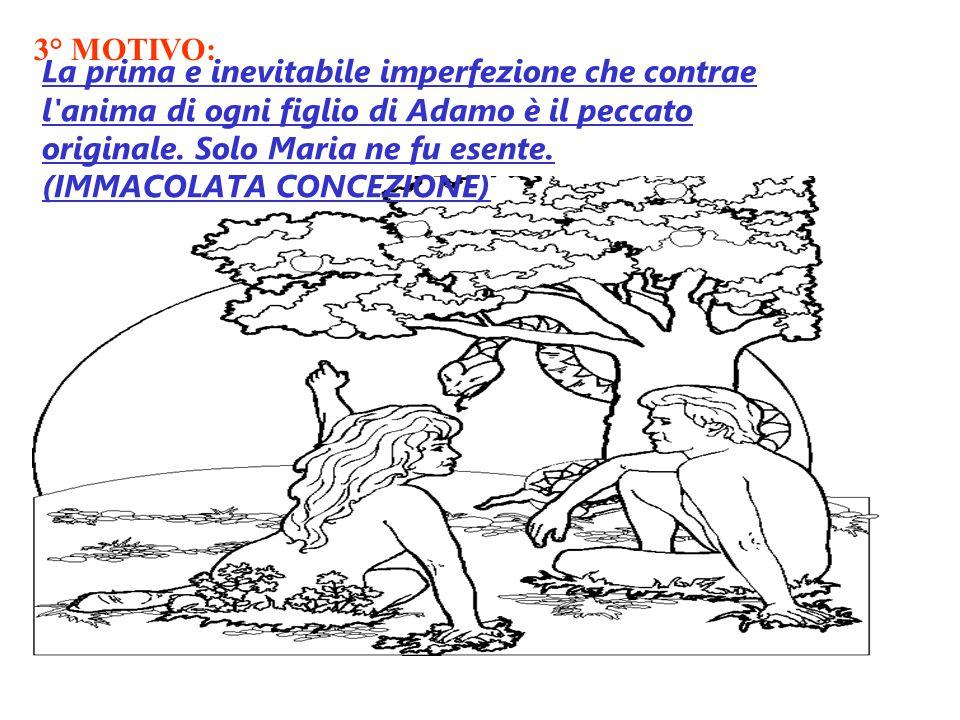 3° MOTIVO: La prima e inevitabile imperfezione che contrae l anima di ogni figlio di Adamo è il peccato originale.