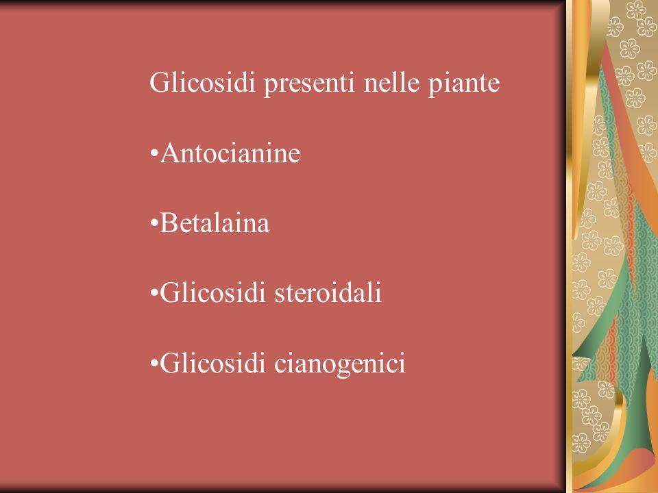Glicosidi presenti nelle piante Antocianine Betalaina Glicosidi steroidali Glicosidi cianogenici
