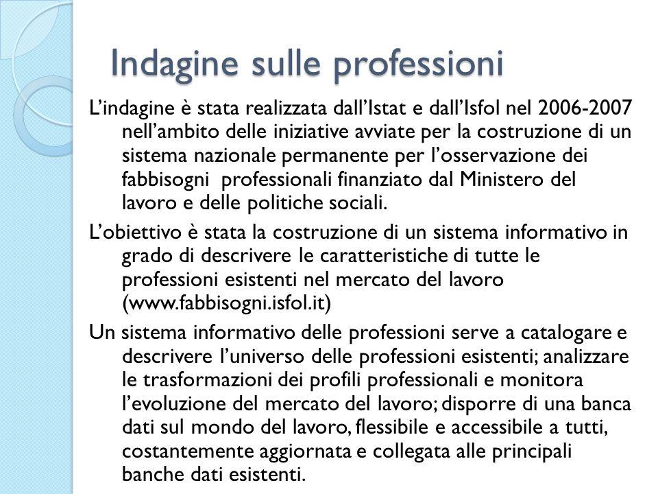 Indagine sulle professioni L'indagine è stata realizzata dall'Istat e dall'Isfol nel 2006-2007 nell'ambito delle iniziative avviate per la costruzione di un sistema nazionale permanente per l'osservazione dei fabbisogni professionali finanziato dal Ministero del lavoro e delle politiche sociali.