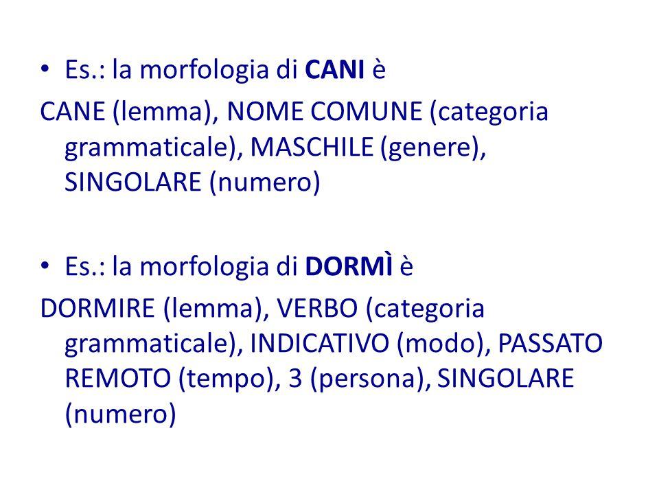 Es.: la morfologia di CANI è CANE (lemma), NOME COMUNE (categoria grammaticale), MASCHILE (genere), SINGOLARE (numero) Es.: la morfologia di DORMÌ è DORMIRE (lemma), VERBO (categoria grammaticale), INDICATIVO (modo), PASSATO REMOTO (tempo), 3 (persona), SINGOLARE (numero)