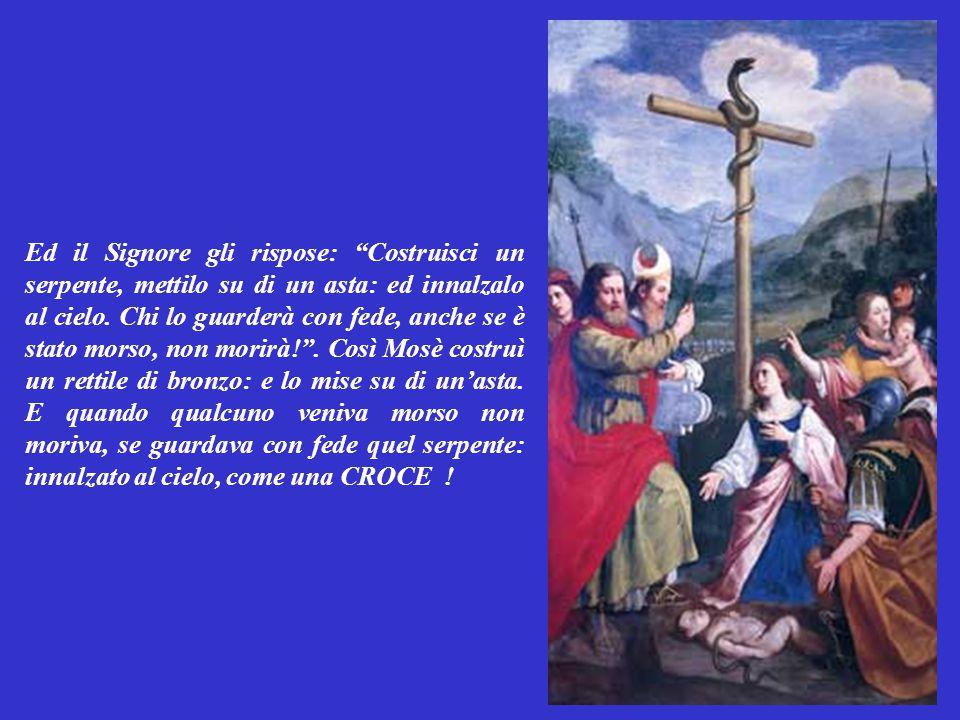Ed il Signore gli rispose: Costruisci un serpente, mettilo su di un asta: ed innalzalo al cielo.
