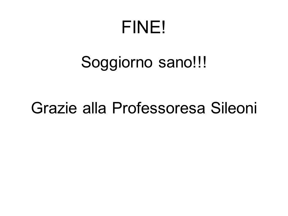 FINE! Soggiorno sano!!! Grazie alla Professoresa Sileoni