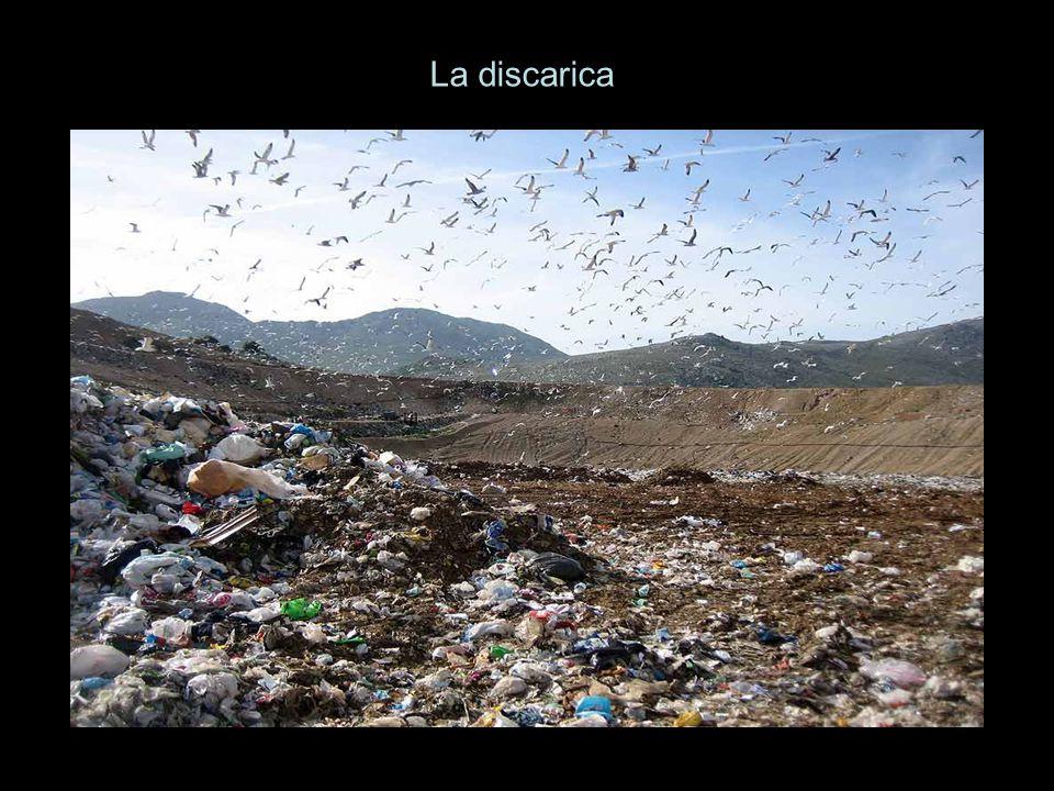 La discarica