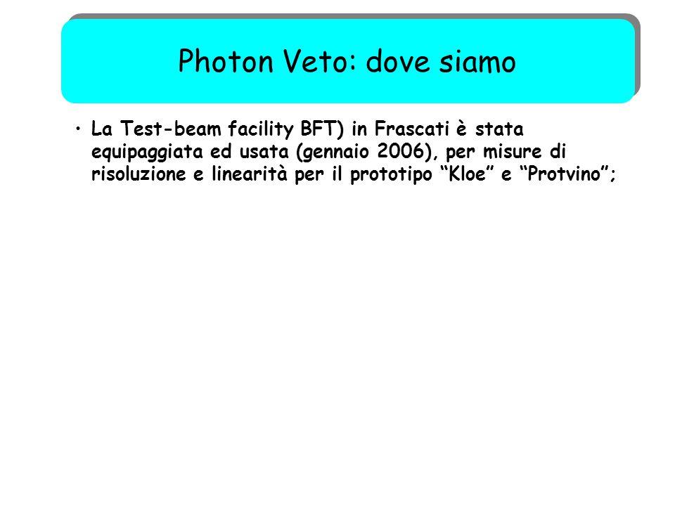 """50 La Test-beam facility BFT) in Frascati è stata equipaggiata ed usata (gennaio 2006), per misure di risoluzione e linearità per il prototipo """"Kloe"""""""