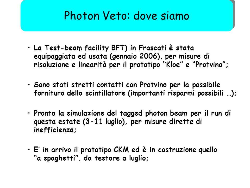 """57 La Test-beam facility BFT) in Frascati è stata equipaggiata ed usata (gennaio 2006), per misure di risoluzione e linearità per il prototipo """"Kloe"""""""