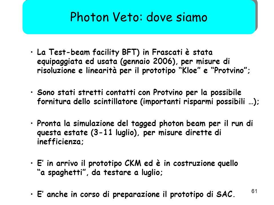 """61 La Test-beam facility BFT) in Frascati è stata equipaggiata ed usata (gennaio 2006), per misure di risoluzione e linearità per il prototipo """"Kloe"""""""