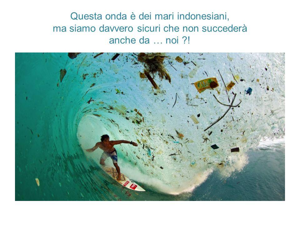 Questa onda è dei mari indonesiani, ma siamo davvero sicuri che non succederà anche da … noi ?!