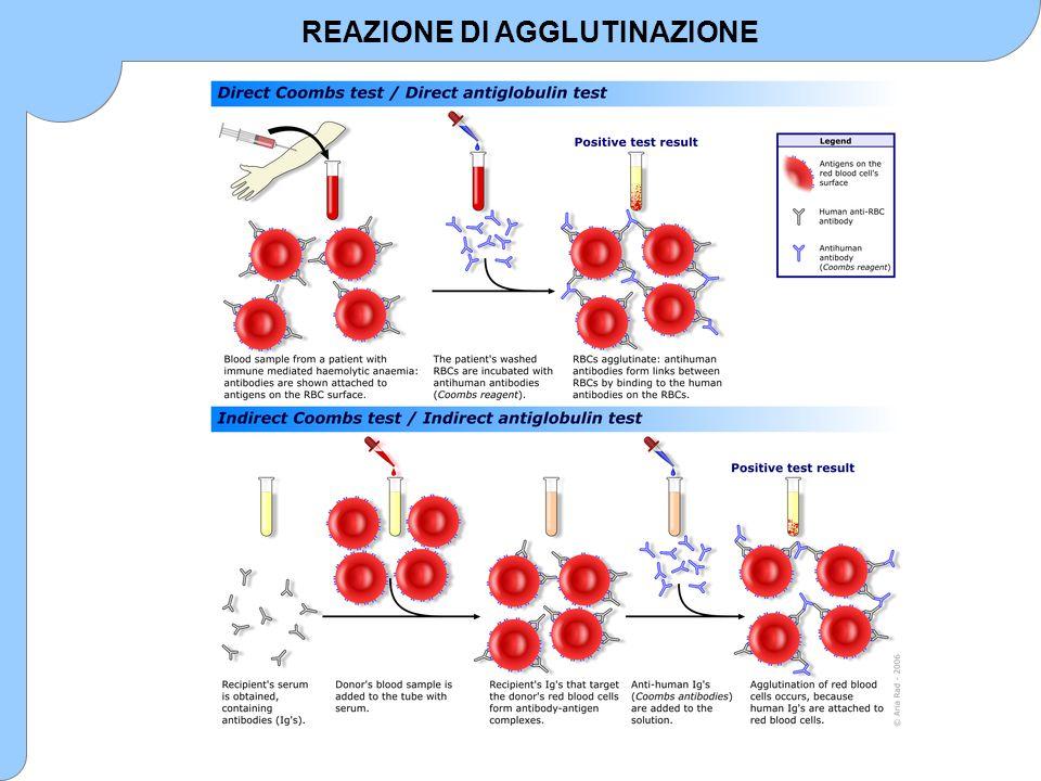 METODI ANALITICI BASATI SU ANTICORPI Nelle tecniche di immunoprecipitazione in fase liquida il precipitato formatosi a seguito della reazione antigene-anticorpo viene di solito quantificato attraverso l'effetto Tyndall, Tecniche di immunoprecipitazione in fase liquida La quantificazione del precipitato può avvenire mediante turbidimetria o nefelometria (la seconda è nettamente più sensibile, permettendo di raggiungere limiti di rivelazione nettamente minori di quelli ottenibili con le tecniche di diffusione).