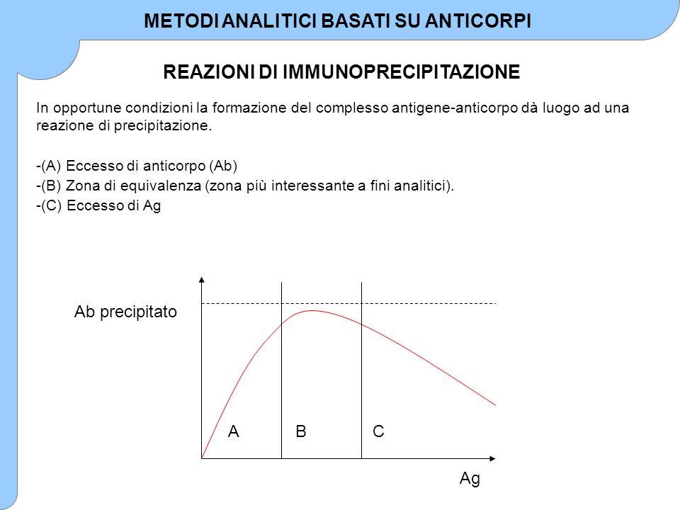 REAZIONI DI IMMUNOPRECIPITAZIONE METODI ANALITICI BASATI SU ANTICORPI La composizione del precipitato varia fortemente nelle tre zone.