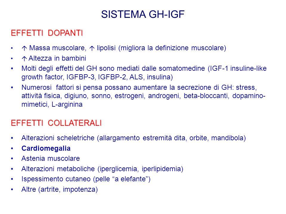 SISTEMA GH-IGF EFFETTI DOPANTI  Massa muscolare,  lipolisi (migliora la definizione muscolare)  Altezza in bambini Molti degli effetti del GH sono