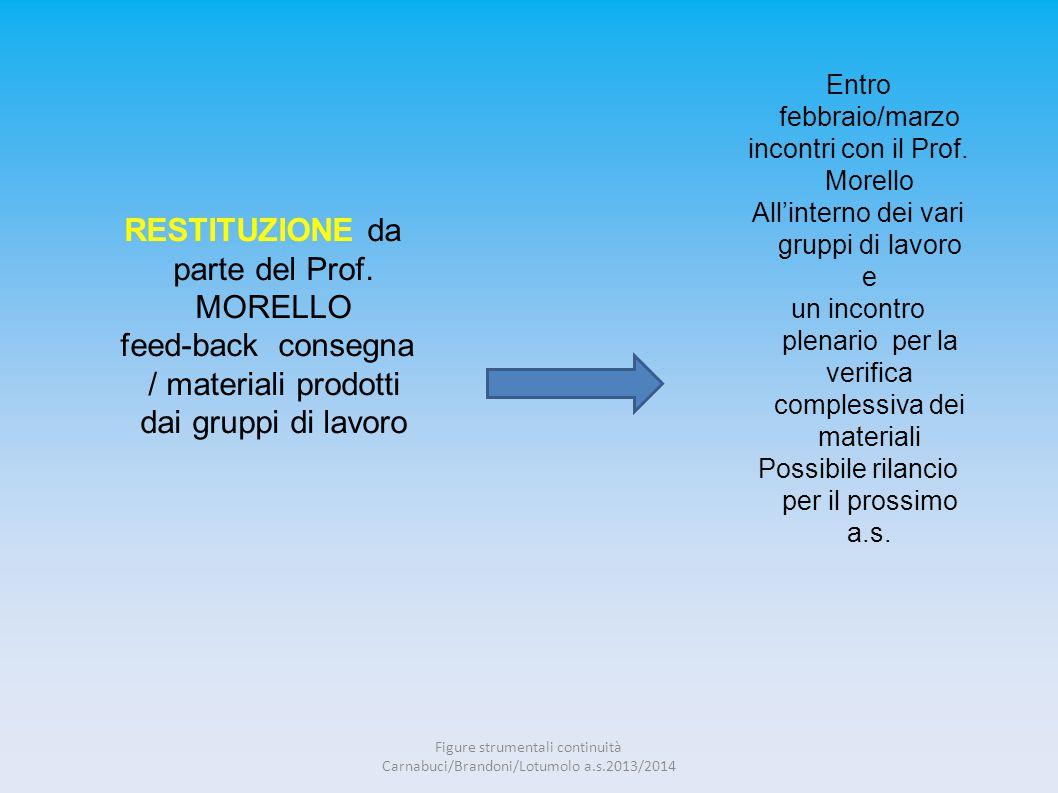 RESTITUZIONE da parte del Prof. MORELLO feed-back consegna / materiali prodotti dai gruppi di lavoro Entro febbraio/marzo incontri con il Prof. Morell