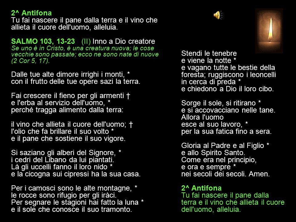 2^ Antifona Tu fai nascere il pane dalla terra e il vino che allieta il cuore dell uomo, alleluia.