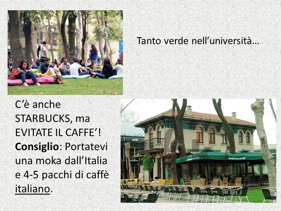 C'è anche STARBUCKS, ma EVITATE IL CAFFE'! Consiglio: Portatevi una moka dall'Italia e 4-5 pacchi di caffè italiano. Tanto verde nell'università…
