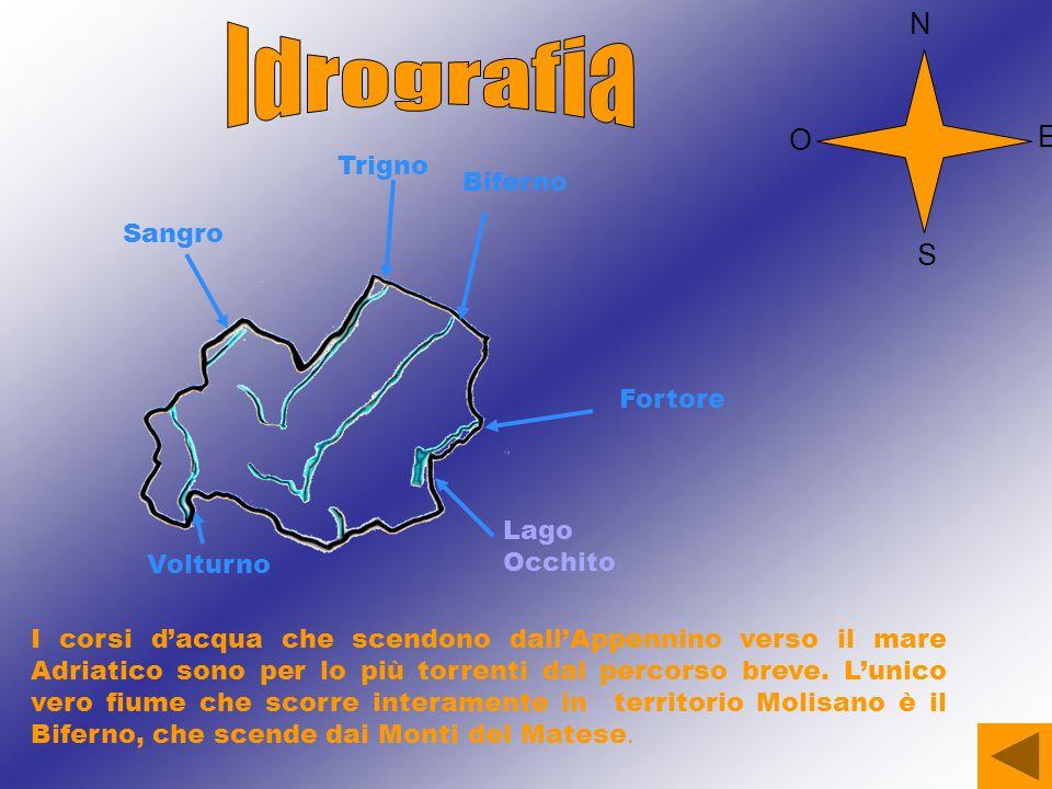 I corsi d'acqua che scendono dall'Appennino verso il mare Adriatico sono per lo più torrenti dal percorso breve.