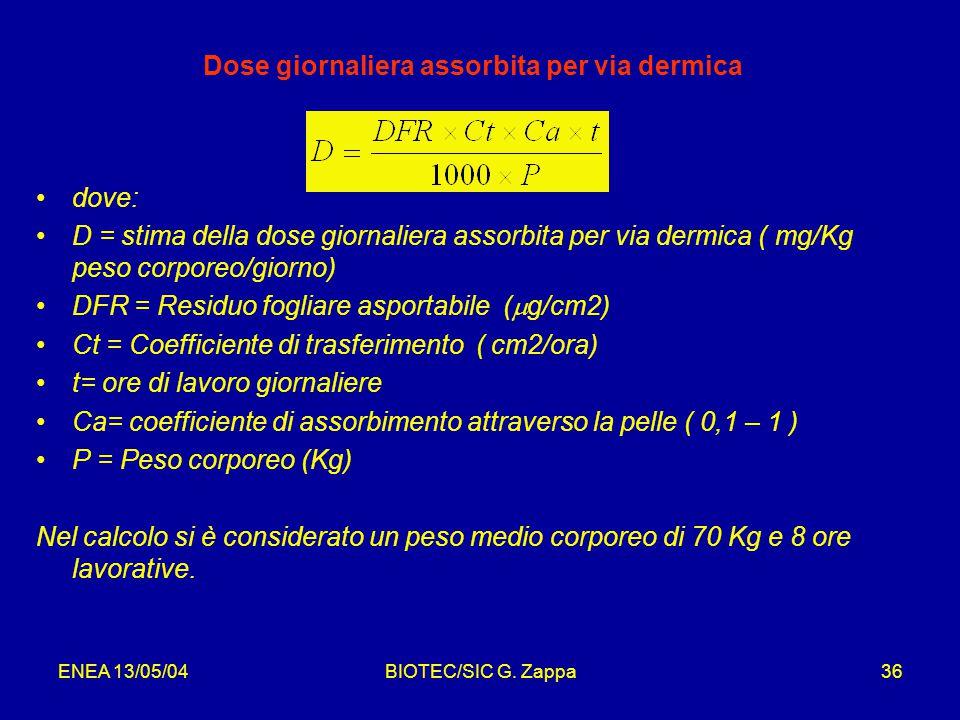 ENEA 13/05/04BIOTEC/SIC G.