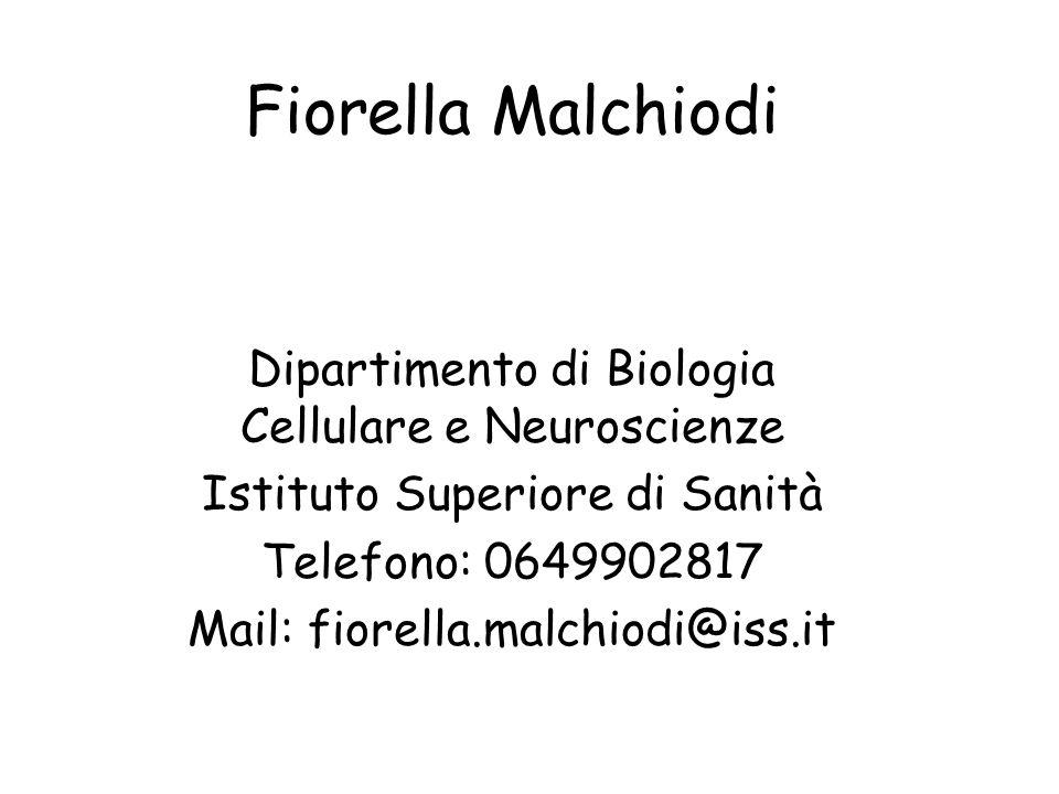 Fiorella Malchiodi Dipartimento di Biologia Cellulare e Neuroscienze Istituto Superiore di Sanità Telefono: 0649902817 Mail: fiorella.malchiodi@iss.it