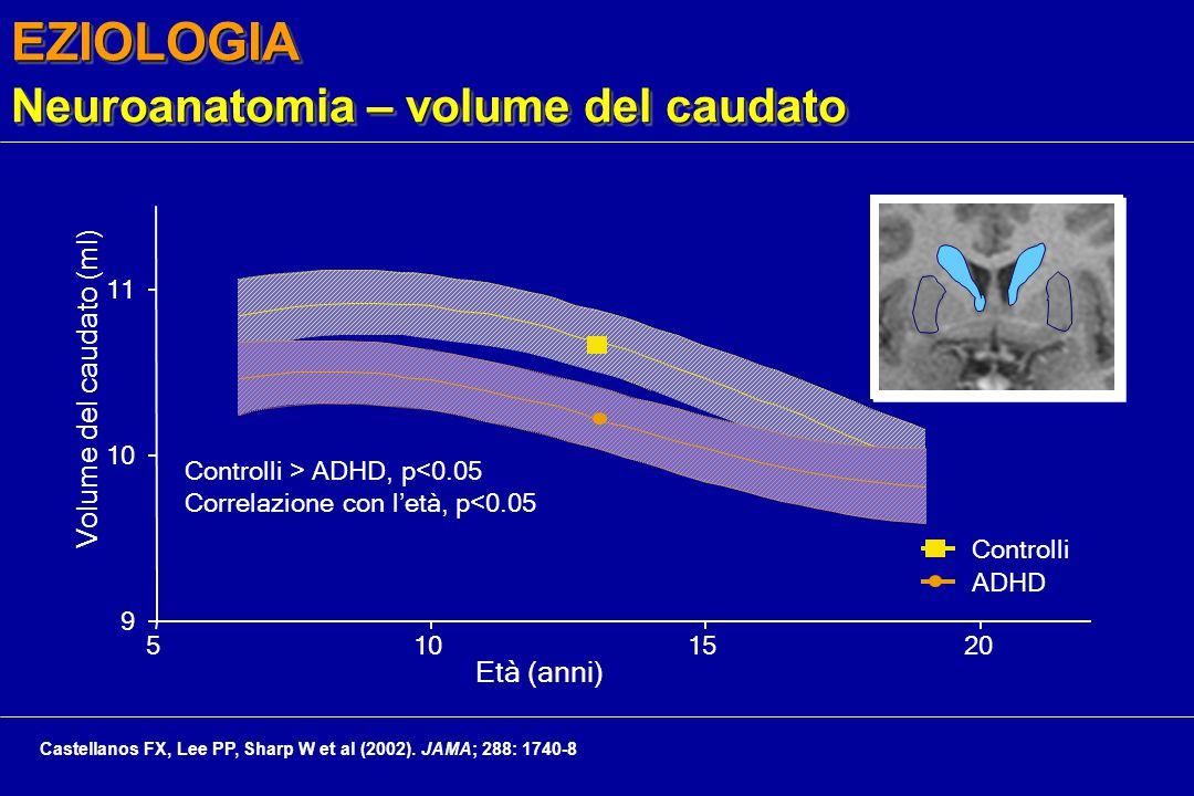 EZIOLOGIA Neuroanatomia – volume del caudato Controlli > ADHD, p<0.05 Correlazione con l'età, p<0.05 9 10 11 5101520 Età (anni) Volume del caudato (ml) Controlli ADHD Castellanos FX, Lee PP, Sharp W et al (2002).