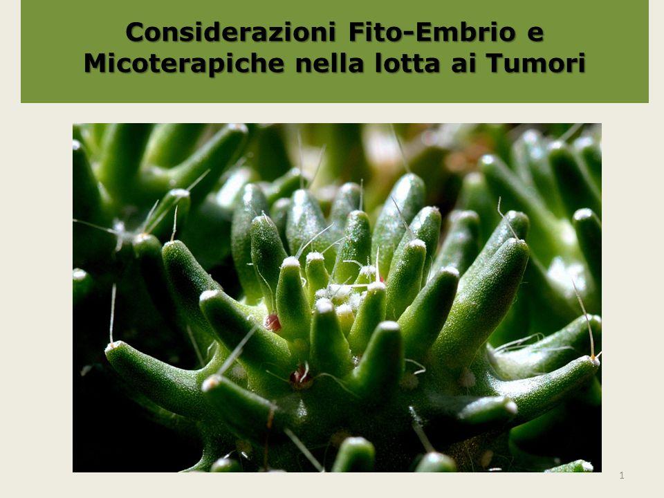 Fito-Embrio-Micoterapia Il trattamento di malattie con la micoterapia sta guadagnando anche in occidente una crescente popolarità.