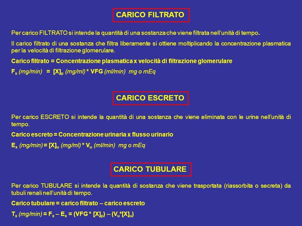 Per carico FILTRATO si intende la quantità di una sostanza che viene filtrata nell'unità di tempo.