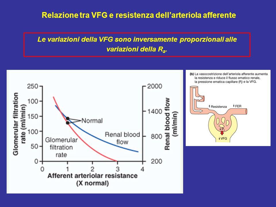 Relazione tra VFG e resistenza dell'arteriola afferente Le variazioni della VFG sono inversamente proporzionali alle variazioni della R a.