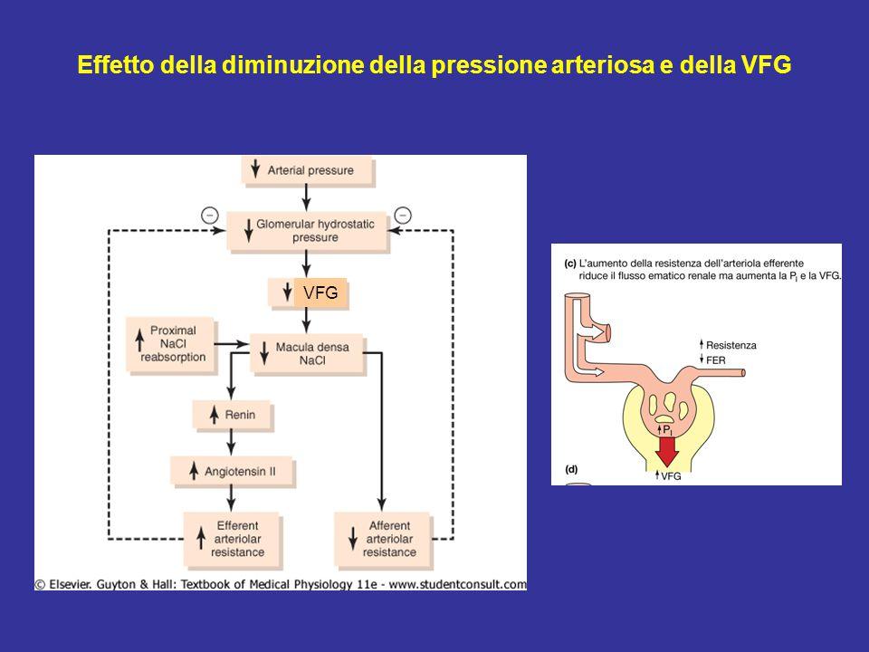 VFG Effetto della diminuzione della pressione arteriosa e della VFG