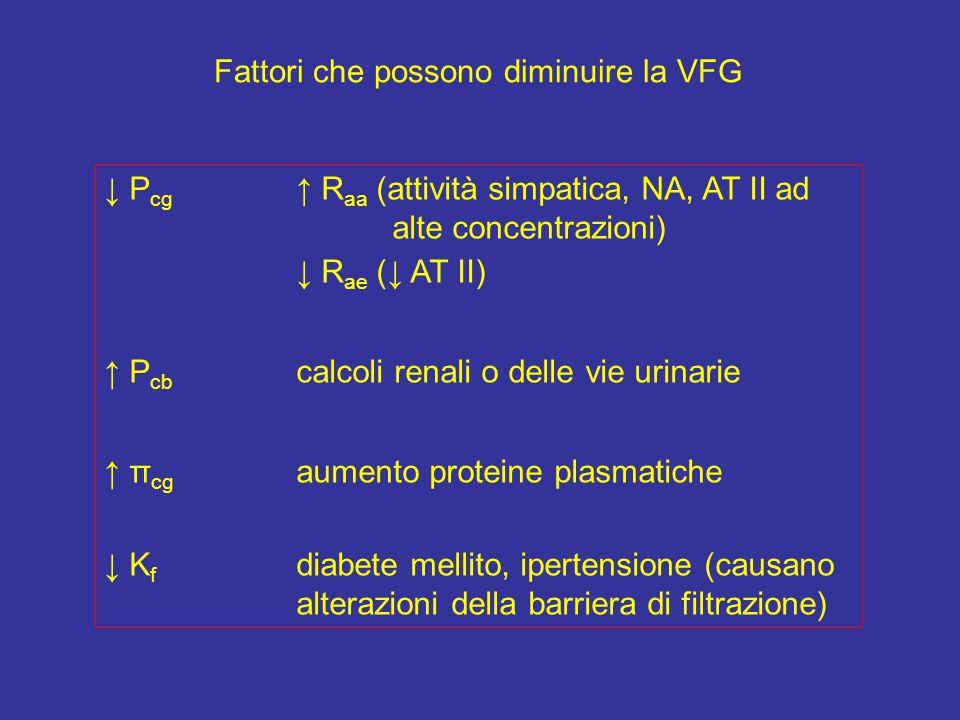 Fattori che possono diminuire la VFG ↓ P cg ↑ R aa (attività simpatica, NA, AT II ad alte concentrazioni) ↓ R ae (↓ AT II) ↑ P cb calcoli renali o delle vie urinarie ↑ π cg aumento proteine plasmatiche ↓ K f diabete mellito, ipertensione (causano alterazioni della barriera di filtrazione)