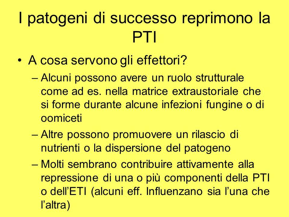I patogeni di successo reprimono la PTI A cosa servono gli effettori.
