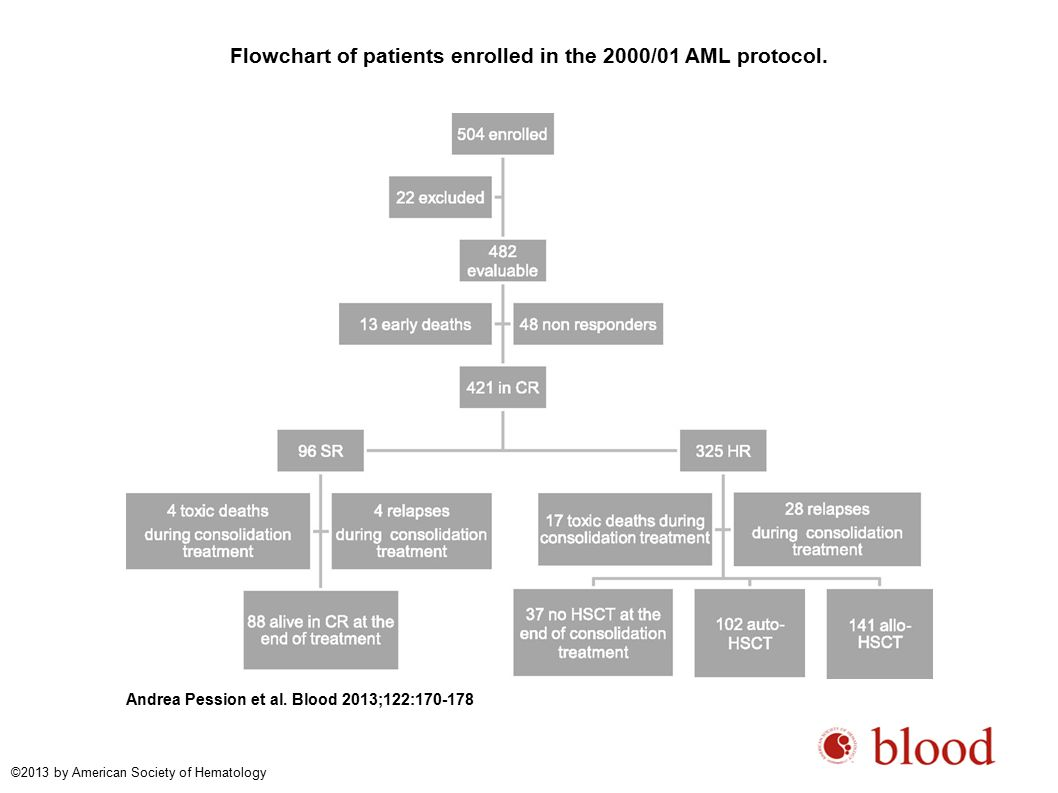 Flowchart of patients enrolled in the 2000/01 AML protocol.