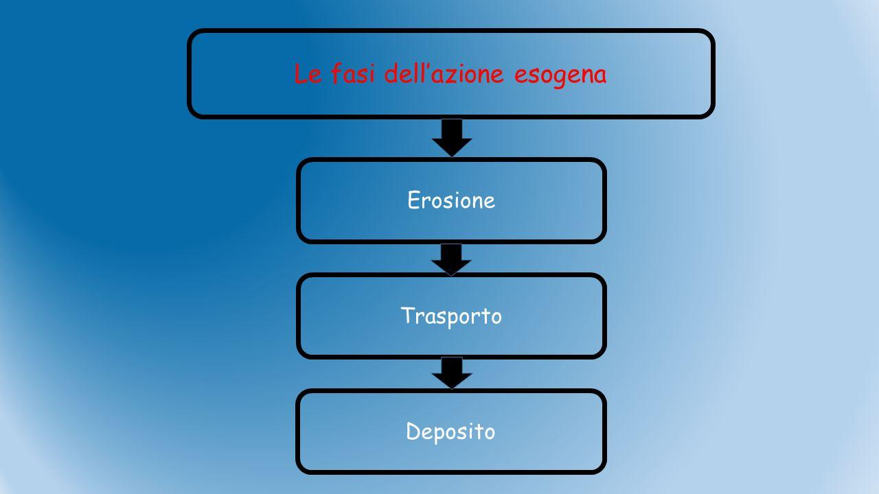 Le fasi dell'azione esogena Erosione Trasporto Deposito