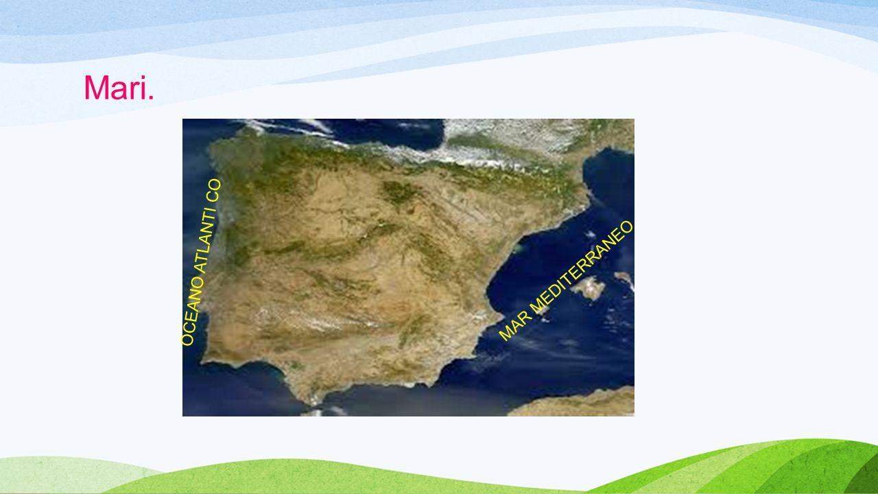 Isole. Isole Baleari: Isole Canarie: