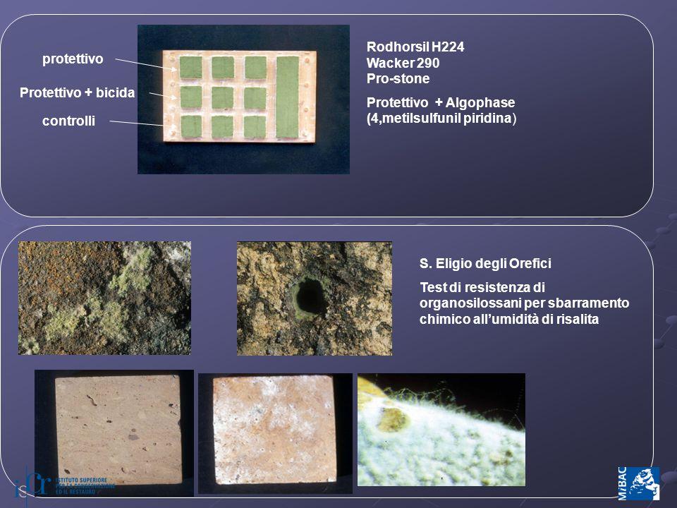 S. Eligio degli Orefici Test di resistenza di organosilossani per sbarramento chimico all'umidità di risalita protettivo Protettivo + bicida controlli