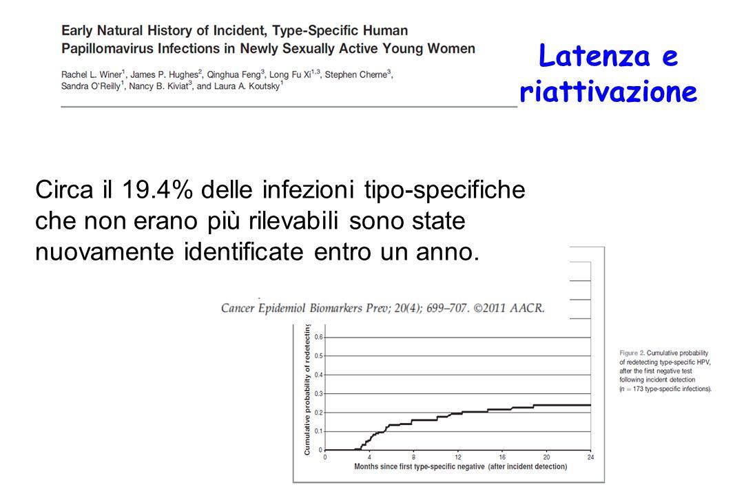 Circa il 19.4% delle infezioni tipo-specifiche che non erano più rilevabili sono state nuovamente identificate entro un anno.