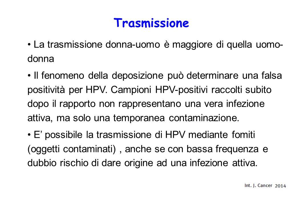 Trasmissione La trasmissione donna-uomo è maggiore di quella uomo- donna Il fenomeno della deposizione può determinare una falsa positività per HPV.