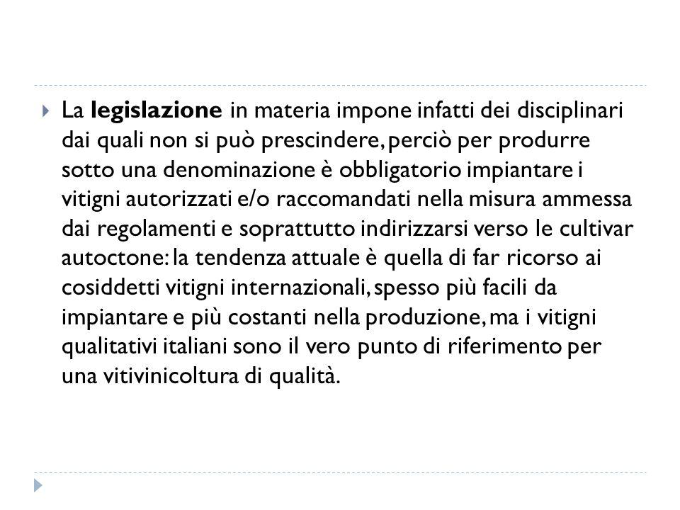  La legislazione in materia impone infatti dei disciplinari dai quali non si può prescindere, perciò per produrre sotto una denominazione è obbligato